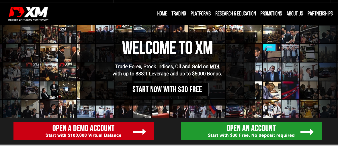 Mx forex limited