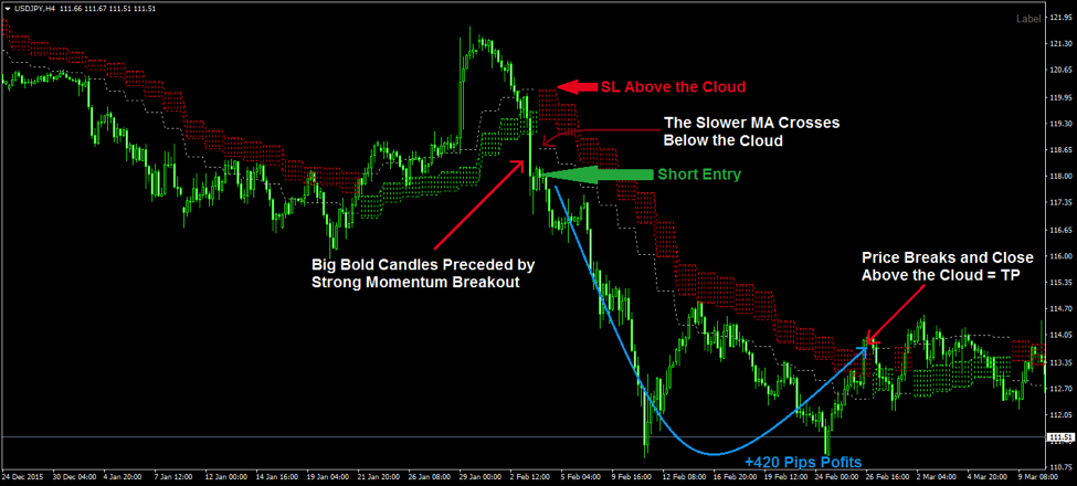 Forex guru of cloud indicator