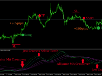 MTF Alligator T3 MT4 Indicator Strategy and Trading Rules